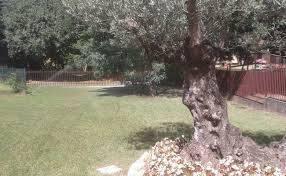 irrigazionagardini31